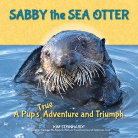 Sabby the Sea Otter